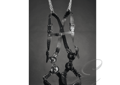 Leather Suspension Harness 1