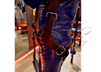 Enfettered Foot suspension harness