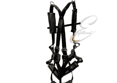 Enfettered Suspenstion Harness Back