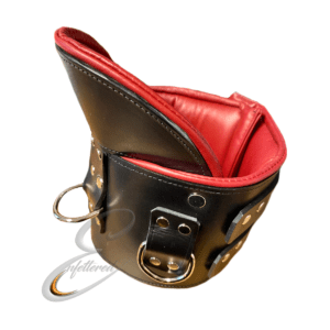 Enfettered Padded Leather POSTURE Collar