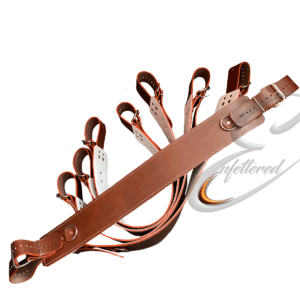 Enfettered Institutional Asylum Restraints – Bed Straps